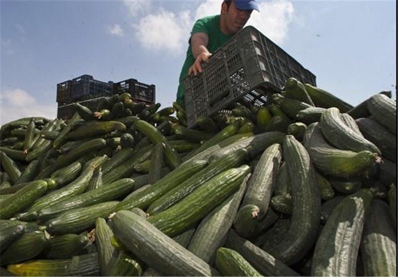 تاثیر تحریم مواد غذایی اروپایی توسط روسیه بر اقتصاد انگلیس