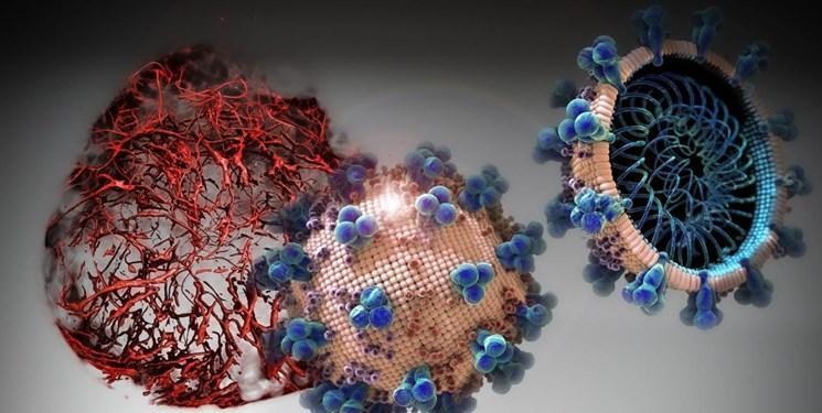 آنتی بادی کووید19 در بدن مردان بیشتر تولید می شود