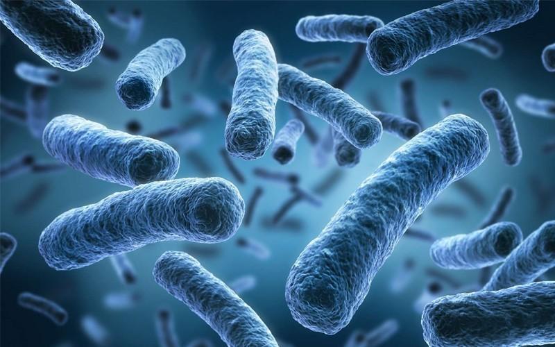 میکروب های زمینی سیستم ایمنی انسان را تهدید می نمایند ، فرازمینی ها خطری برای ماموریت های فضایی