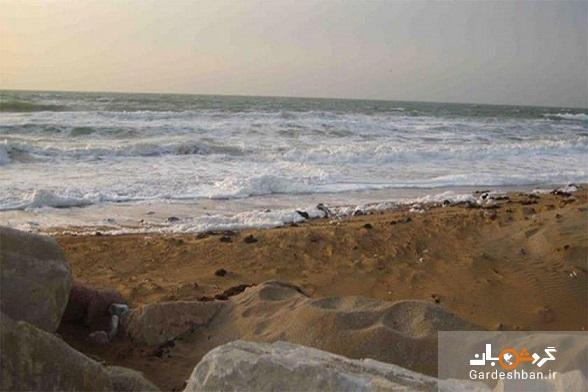 جزیره تهمادون؛ یکی از جزایر غیر مسکونی در خلیج فارس