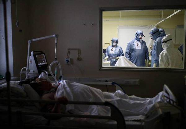 شمار تلفات ویروس کرونا در روسیه از 80 هزار نفر گذشت خبرنگاران