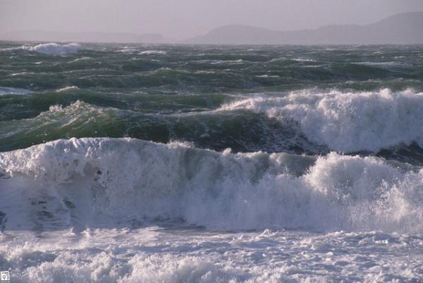 خلیج فارس و دریای عمان مواج می شوند، وجود احتمال غرق شدن شناگران