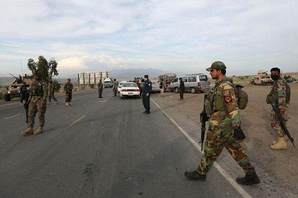 303 نفر از اعضای طالبان کشته و زخمی شدند