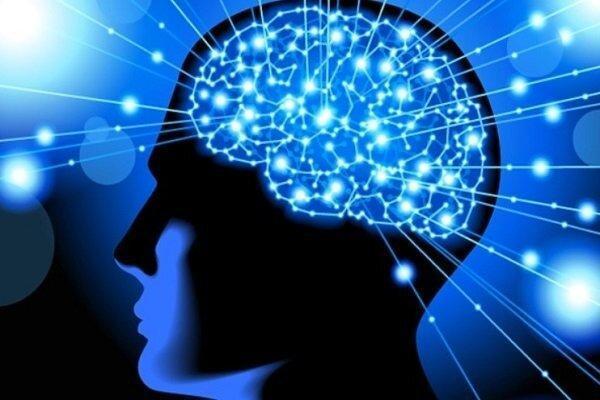 فراخوان ساخت الکترودهای عصبی منتشر شد